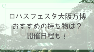 ロハスフェスタ大阪万博おすすめの持ち物は?開催日程も!-min