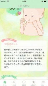ニナルninaru口コミ